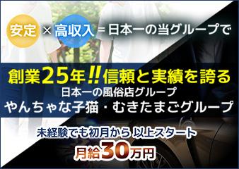やんちゃな子猫堺東店の画像